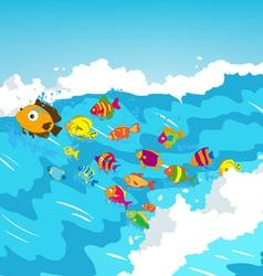 Surf fish vector