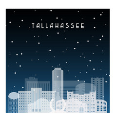 winter night in tallahassee night city in flat vector image