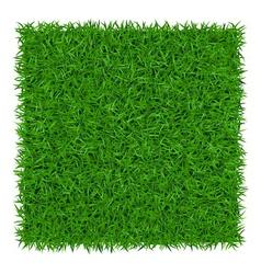 Green grass background 1 vector