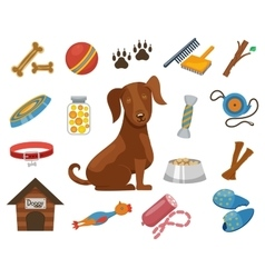 Pet dog icons vector image