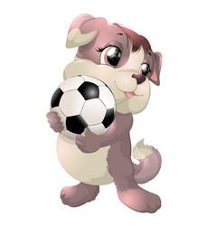 beautiful cute dog vector image