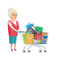 grandmother with shopping cart vector image