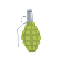 hand grenade cartoon vector image