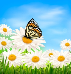Nature background with summer flowers and vector