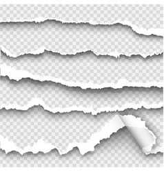Set of torn paper on transparent background vector