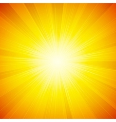 shiny sun vector image
