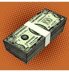 Bundle hundred-dollar bills vector