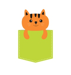Cat in the pocket Cute cartoon character Orange vector