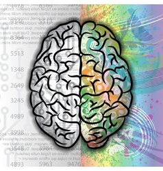 Human brain color pattern vector image