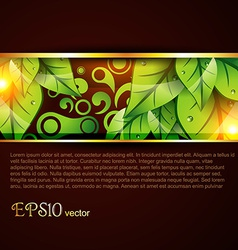 Leaf template vector