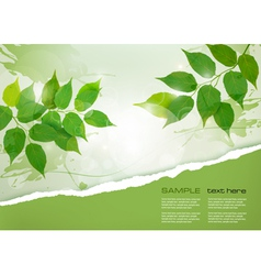 Nature background with green spring leaves and vector image