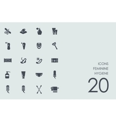 Set of feminine hygiene icons vector image