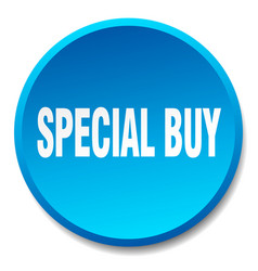 Special buy blue round flat isolated push button vector