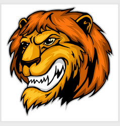 mascot lion head vector image