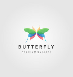 colorful flying butterfly logo design vector image