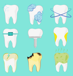 set of different teeth implant caries clean tooth vector image