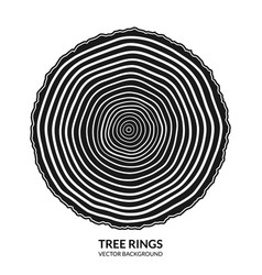 Tree rings and saw cut trunk symbol vector