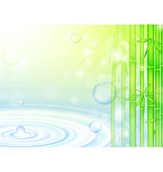 water bamboo vector image vector image