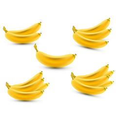set of 3d realistic bananas banana icon vector image