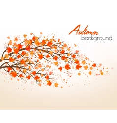 Autumn abstract background with colorful leaves vector image
