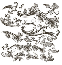 collection of hand drawn floral swirls for design vector image