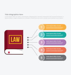 law education learning infographic data template vector image