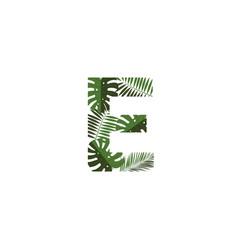 logo letter e tropical leaves vector image