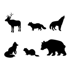 silhouettes animals tundra vector image