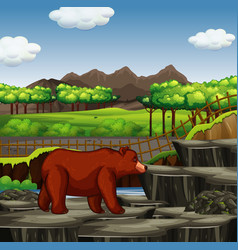 Zoo scene with grizzly bear vector