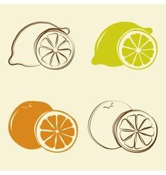 Lemon and orange icons - vector