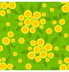 yellow dandelion seamless pattern vector image vector image