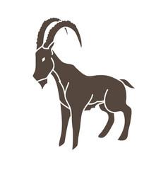 ibex standing graphic vector image