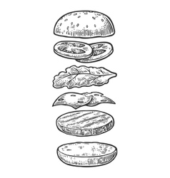 Ingredients classic cheeseburger isolated painted vector