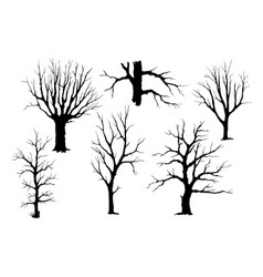 trunks of trees silhouette set vector image