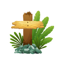 wooden sign in jungle rainforest with tropical vector image