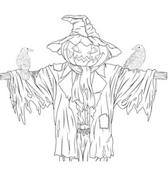 scarecrow for halloween with crows vector image