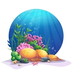 Undersea flora on the sandy bottom of the ocean vector image