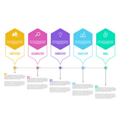 5 options or steps infographic in flat style on vector image