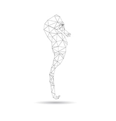 Abstract sea horse vector image
