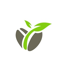 Bean seed leaf nature logo vector