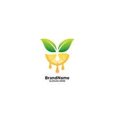 Orange fruit logo with leaf vector