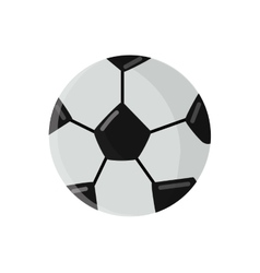 soccer football ball vector image