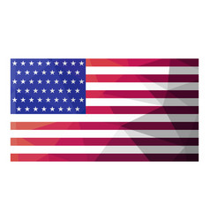 Usa flag vector