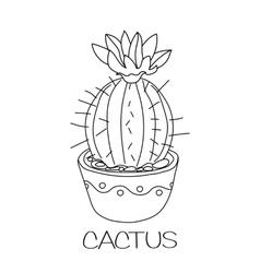 Cactus in flower pot vector image