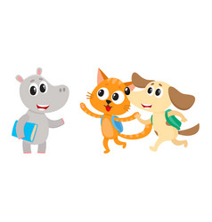 animal student characters hippo meeting cat dog vector image