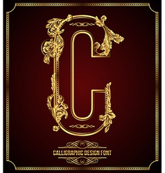 Calligraphic font Letter C vector image