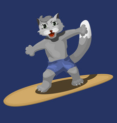 a cute cat surfer cartoon vector image