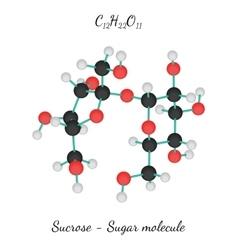C12H22O11 Sucrose sugar molecule vector image