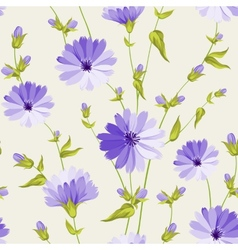 Chicory pattern vector image