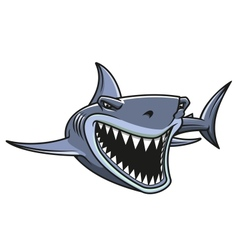 Danger shark attacks vector
